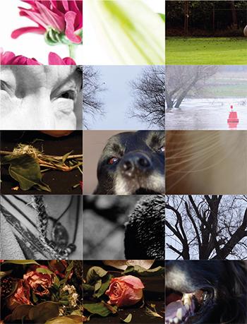 Expositie 3e jaars cursisten digitale fotografie